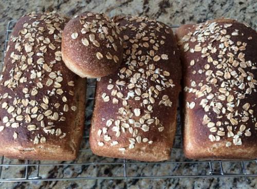 Oatmeal sandwich leaves fresh bread