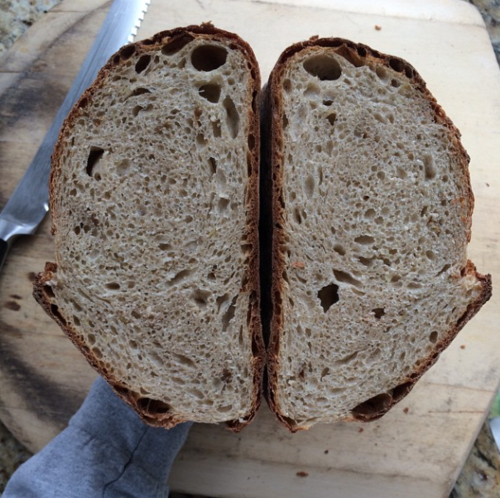 Rosated garlic potato bread loaves crumb