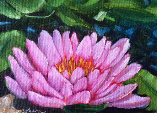 106 Unfurl - 5x7 oil painting lotus blossom flower - Daily Painting - Lisa Cohen