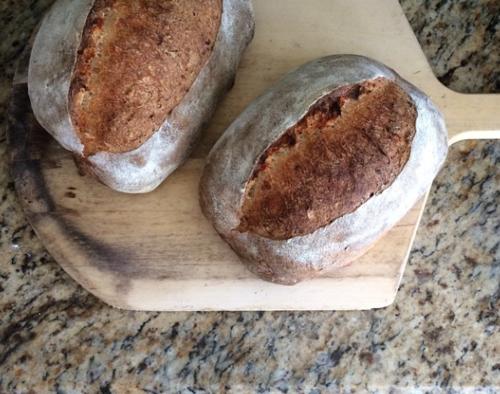 Rosated garlic potato bread loaves 2