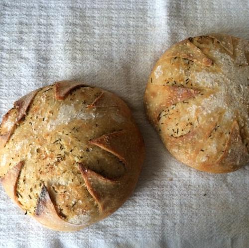 Rosemary Meyer Lemon Comagne Naturally Leavelened Bread