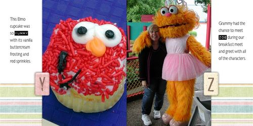 Sesame_place_yz_copy